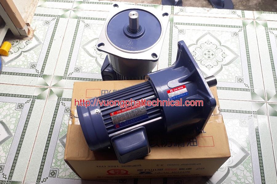 Motor giảm tốc mặt bích Tunglee 2hp