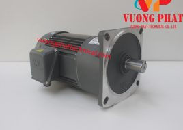 Motor giảm tốc Wanshsin mặt bích 2HP